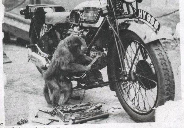 MonkeyMechanic